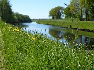 Sommerwiese in Friedeburg-Ostfriesland